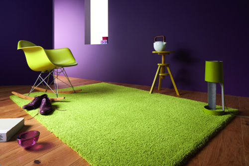 tl_files/golze/img/news/domotex2014/contzencolours-kiwi-030.jpg